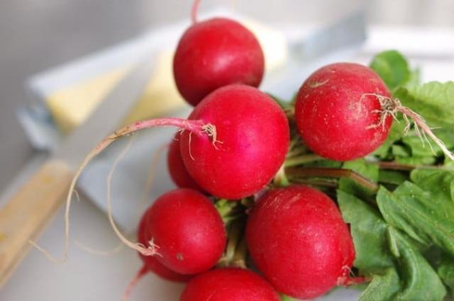 Четыре основных секрета выращивания редиса!