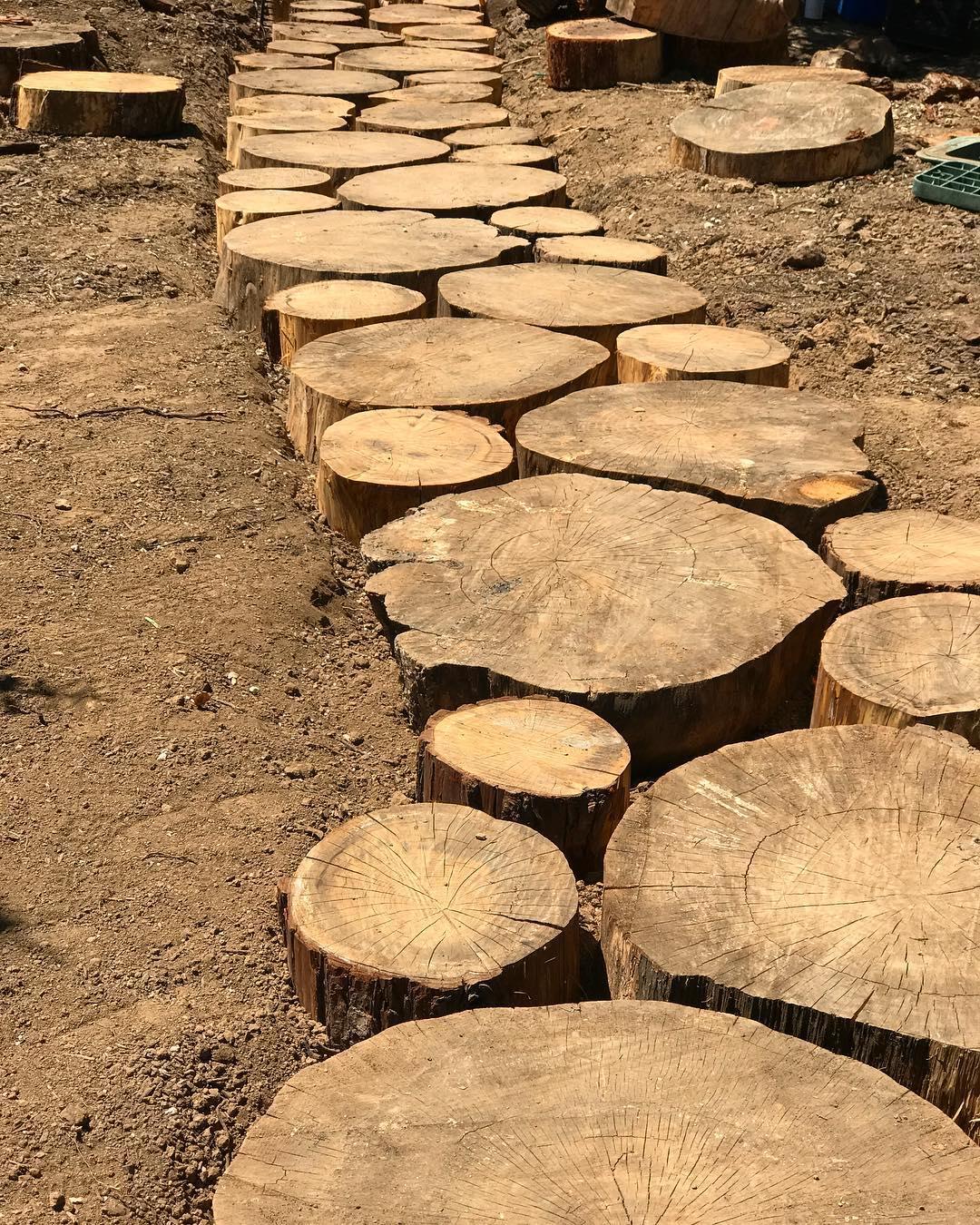 Построение садовой дорожки из спилов