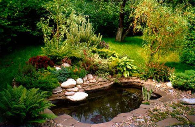 Горизонтальное озеленение участка – правила и копилка идей для ландшафтного дизайна