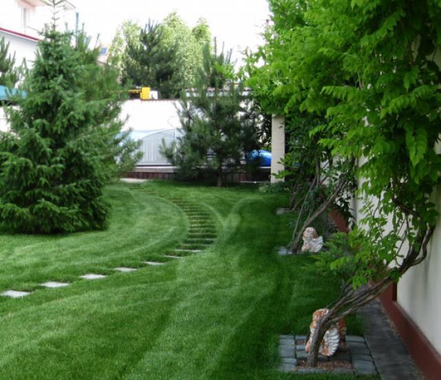 Как оригинально украсить унылый забор на даче: способы декорирования садовых ограждений