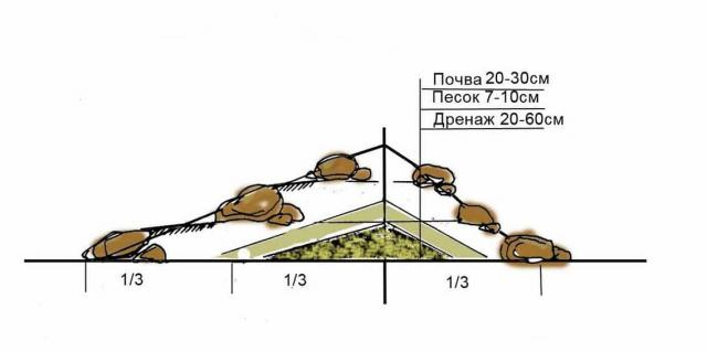 Как построить альпийскую горку: все тонкости обустройства альпинария