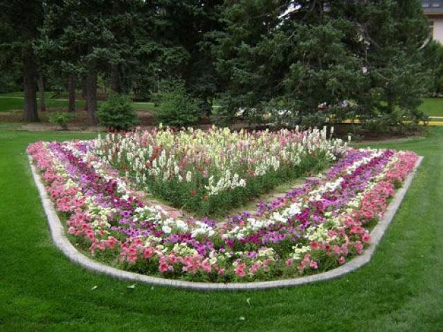Как разбить клумбы и цветники на участке своими руками