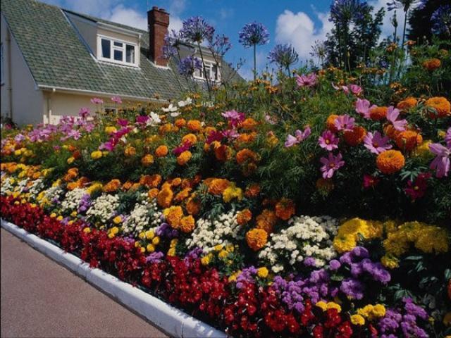 Как сделать красивые клумбы для цветов на даче из подручных материалов