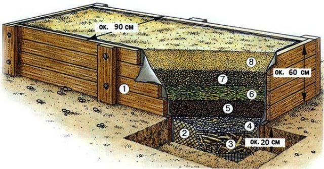 Как сделать теплую грядку под огурцы в открытом грунте