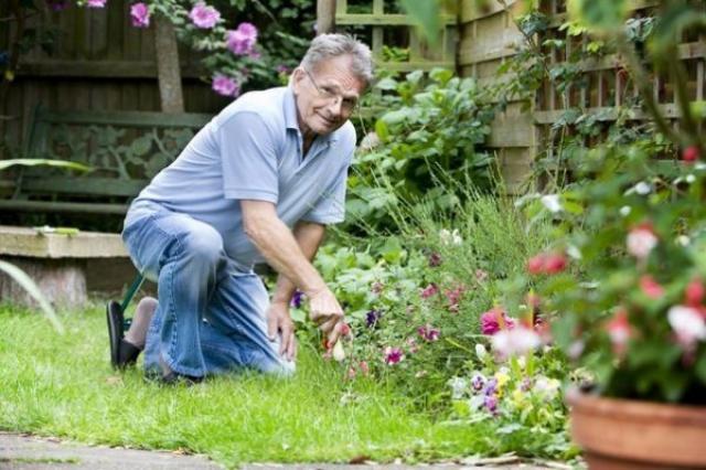 Маленькие, но очень важные секреты опытного садовода