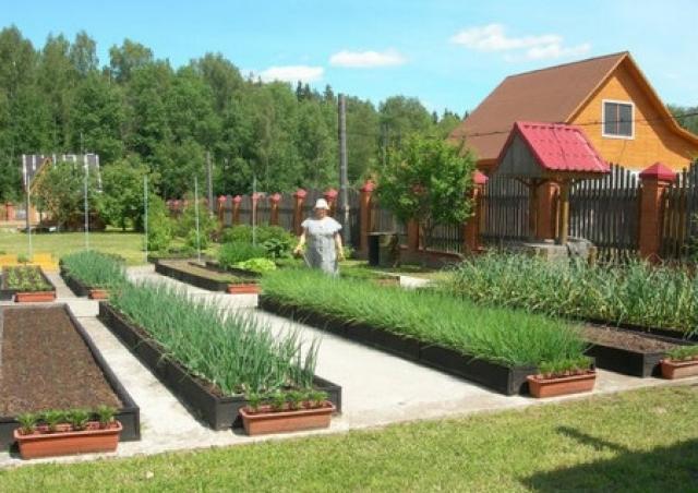 Современные ограждения для цветочных и овощных грядок